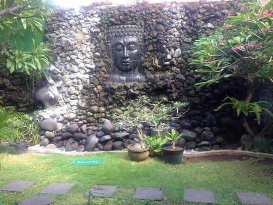 Bella Vista Coffee & Juice Bar: Zen garden out the back