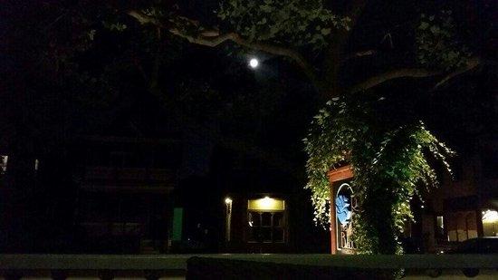 The Blue Rose Inn & Restaurant: Full moon. Outstanding dimmer on the porch.