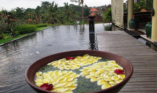Komaneka at Rasa Sayang: view from the top floor