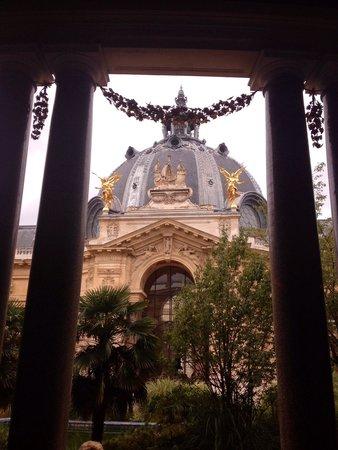 Petit Palais, City of Paris Fine Art Museum: Dalla caffetteria vista sul giardino