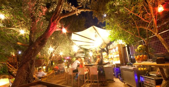Botanik Garden Bar: .