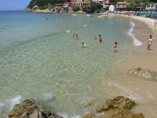 Spiaggia della Biodola : scaglieri