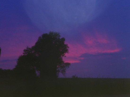 Gut am Strand - Teichhof Fehmarn: Sonnenuntergang von der Terrasse