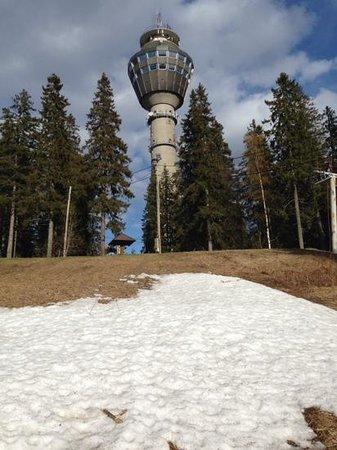 Torre Puijo: Pujo