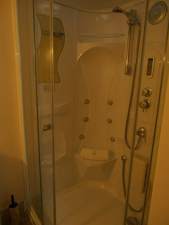 A Park View Hotel : The Jacuzzi shower
