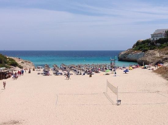 Club Hotel Tropicana Mallorca: spiaggia