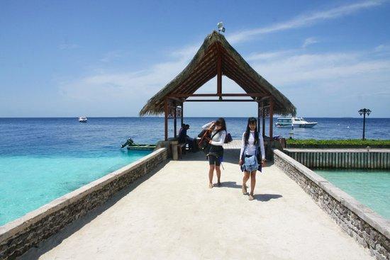Fihalhohi Island Resort : Arrival Pier