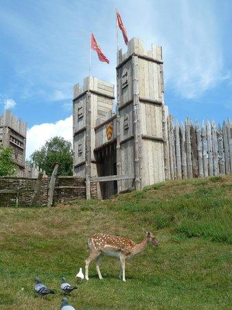 Mountfitchet Castle: Layout5