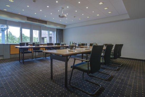 Radisson Blu Senator Hotel : Conference