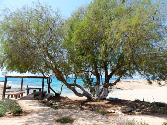 Ammos Kambouri Beach