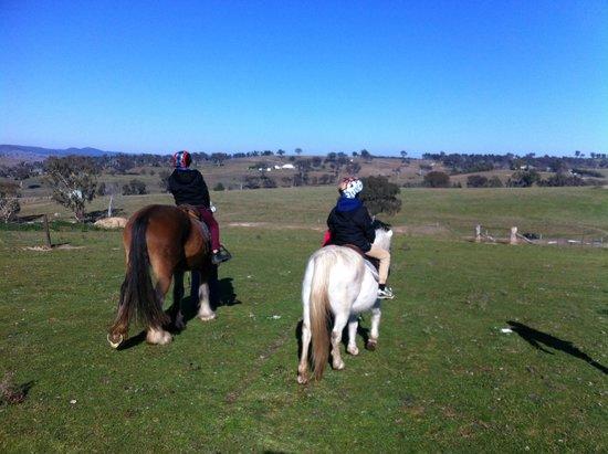 Barcoos Farmstays Bathurst : lovely rides through the property