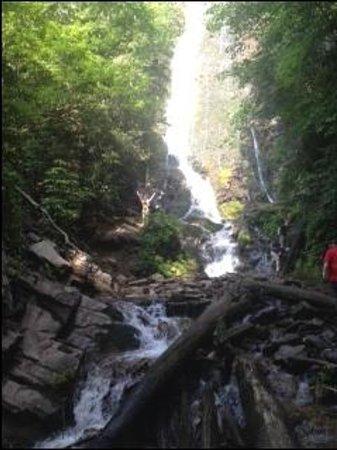 Mingo Falls: Granddaughter climb part way up........