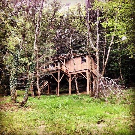 Domaine d'Escapa : Vue de la cabane