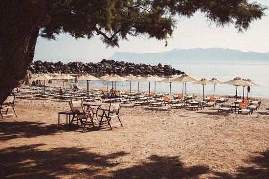 Aphrodite Beach Hotel: отель