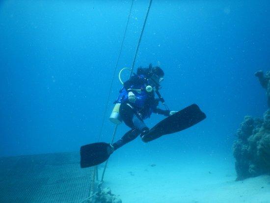 Coraya Divers: Silvia doet wat truucjes onder water