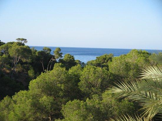 IBEROSTAR Club Cala Barca: vue du balcon