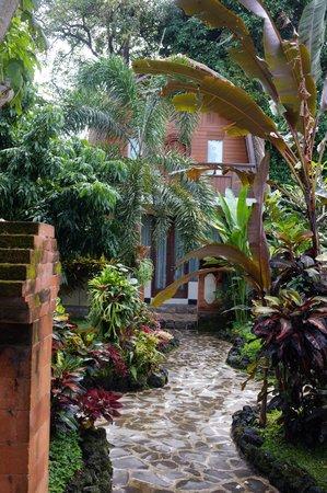 Beji Ubud Resort : территория отеля