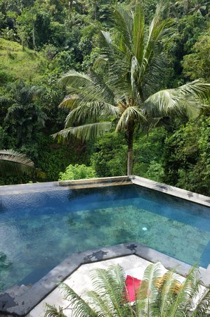 Beji Ubud Resort : бассейн