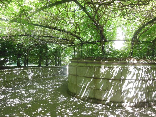 The Elms : The service entrance was screened from view by Wisteria vines
