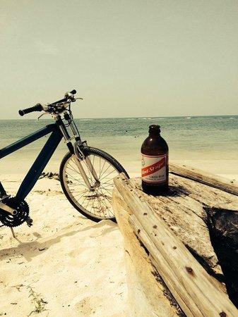 Seastar Inn: Beach Side Bar Shack on ride