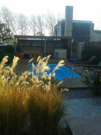 Posada El Capullo : piscina