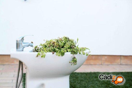 Cadiz Inn Backpackers: Green is everywhere