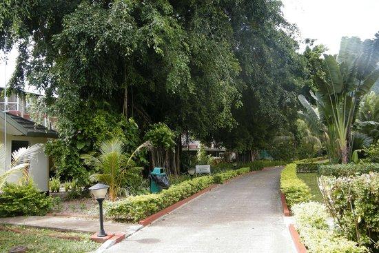 Berjaya Beau Vallon Bay Resort & Casino - Seychelles: vialetti nel giardino