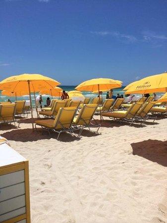 Hilton Cabana Miami Beach: beach area