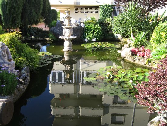 Hotel Bosque-mar: Jardines