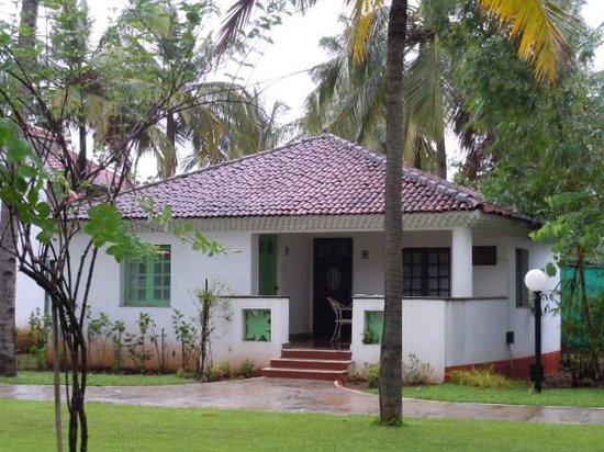 Dona Sylvia Beach Resort: Nature
