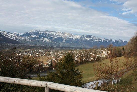 Vaduz Castle: Vista dai dintorni del castello