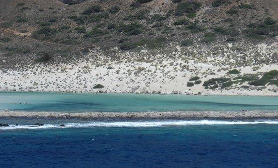 Cretan Daily Cruises : balos