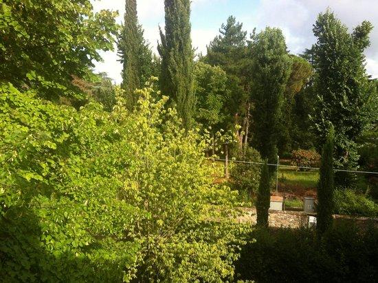 Ape Rosa Relais : Il giardino