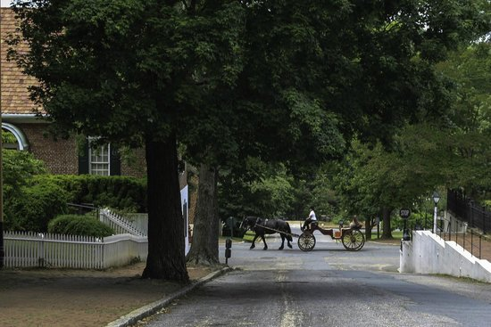 Old Salem Museums & Gardens: Carriage Ride