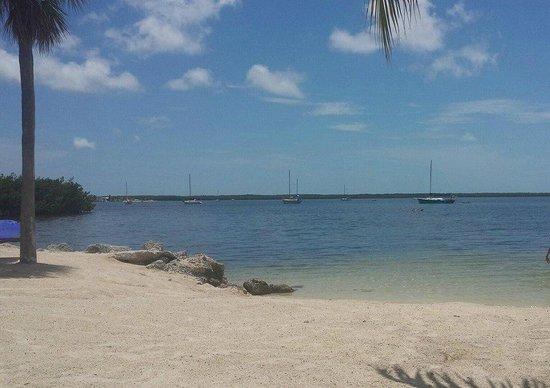 Hampton Inn Key Largo: View from the private beach