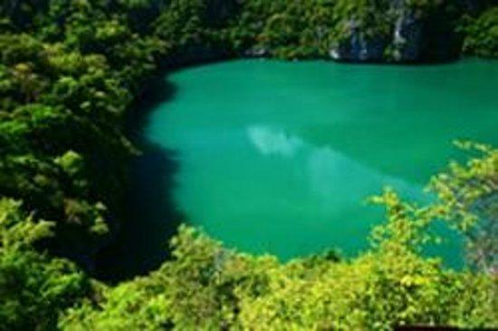 Mu Ko Ang Thong National Park : Green Lagoon Angthong National Park