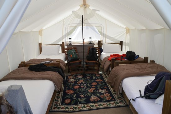 Yellowstone Under Canvas : 4 pers safari