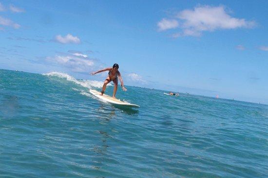 The Modern Honolulu : Annjielyn