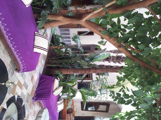 El Fenn: Courtyard