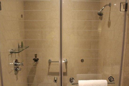 Jumeirah Emirates Towers: Shower