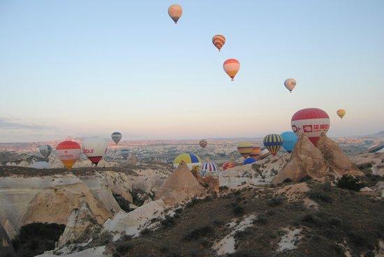 Saray Balloons