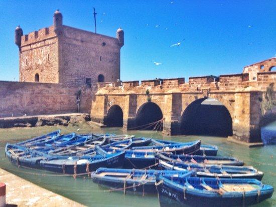 Remparts d'Essaouira : Port in Essaouira