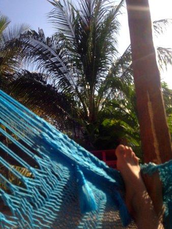 Tribu Hostel: Chilling in the hammocks!