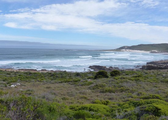 View at the Cape of Good Hope
