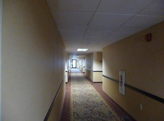 Best Western Plus Colony Inn: couloir des chambres