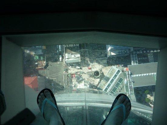 Sky Tower (Torre del cielo): à nos pieds
