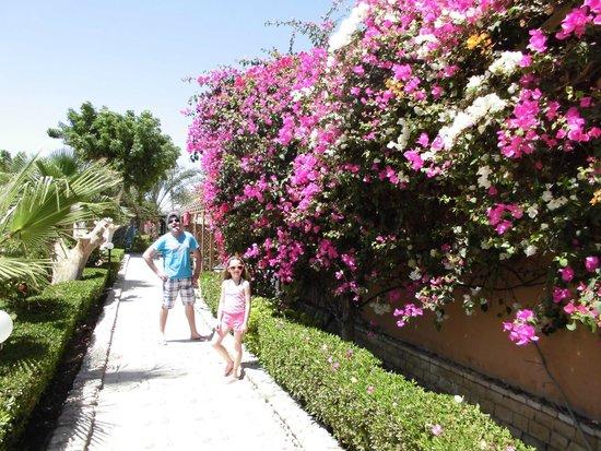 Giftun Azur Resort: ambiente muito bonito e cuidado