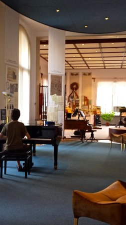 Bedrich Smetana Museum : Interior, with a guest player!