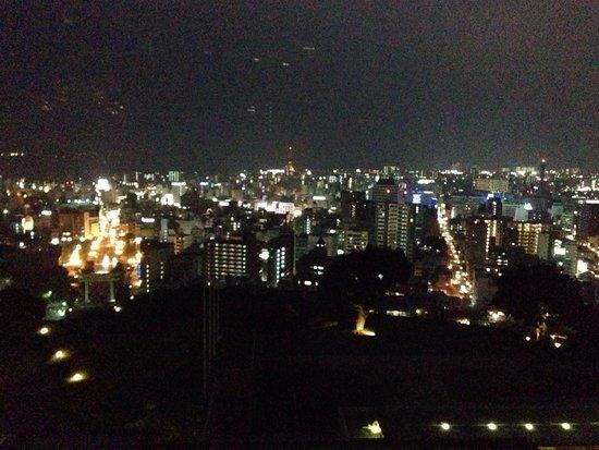 SHIROYAMA HOTEL kagoshima: 夜景