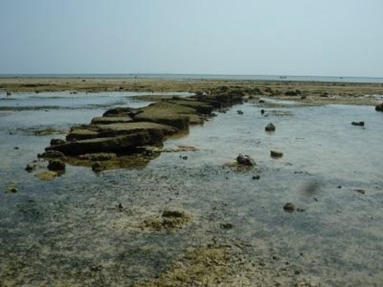 Cape Bisezaki : 備瀬崎03